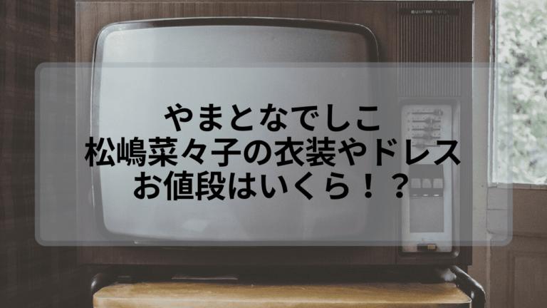 【やまとなでしこ】松嶋菜々子の衣装やドレスの値段はいくら?