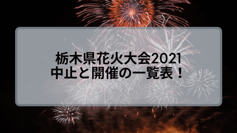 栃木県花火大会2021の中止と開催一覧!今年見れるのは何ヶ所?